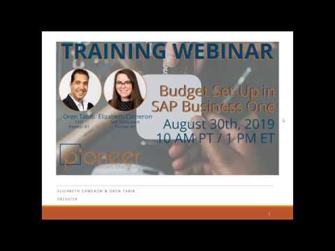 SAP Business One Budget Management Training - YouTube