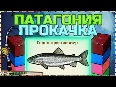 РР3 Норвегия Как и где ловить губки? +Мега прокачка!