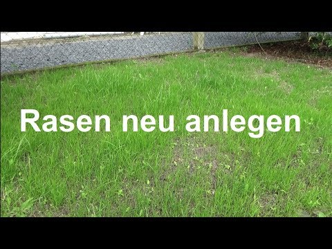 Rasen anlegen Rasen säen Rasen aussäen ausführliche Anleitung Rasen neu anlegen Neuanlage Rasen