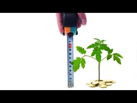Оценка стоимости бизнеса. Затратный и доходный подходы #ОБРАЗОВАНИЕ.РФ  /
