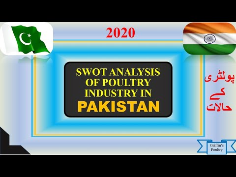 , title : 'SWOT Analysis - Swot analysis for Business - What is swot analysis? Definition, Example SWOT in Urdu