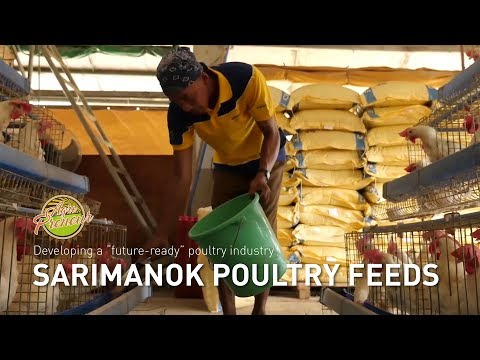 Agripreneur: Sarimanok's take on a future-ready poultry farming