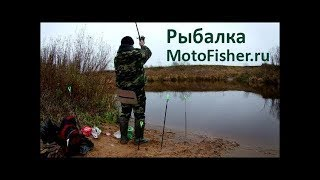 Ловля в ноябре на фидер реки беларуси