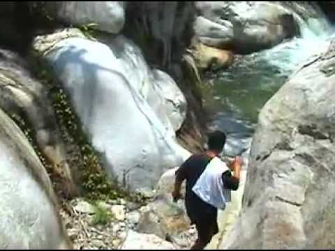 Kung paano ituring ang isang kambing para sa mga worm