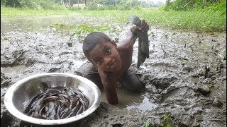 Do You Believe This Fishing? Poisonous Thorn Fish Catching From Mud Hole By Kids Hand