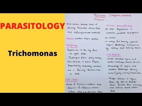 Trichomonas colpitis nőknél