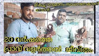 Pigeon Loft Visit ||പ്രാവ്  വളർത്തൽ||Pravu Valarthal Malayalam ||Our Dream Factory||
