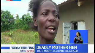 Family in mourning after a hen mauled to death a six-months-old baby in Kakamega