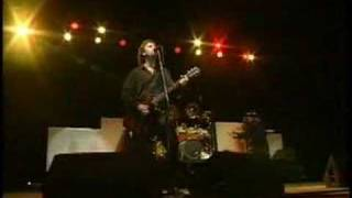 38 Special Live @ Sturgis - If I'd Been The One