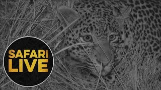 safariLIVE: The Gauntlet - Episode 1 - July 28, 2018