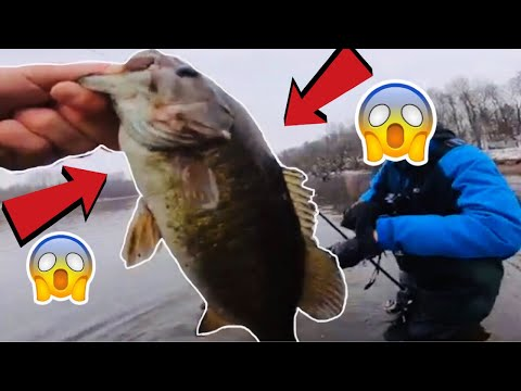 FISH EVERY CAST! MISSISSIPPI RIVER FISHING PT:2