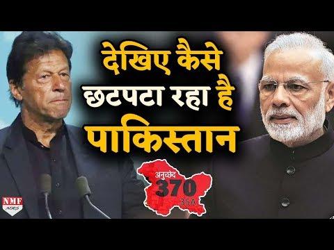 Article 370: कश्मीर के मामले को लेकर पागल हुआ पाकिस्तान, लगाया ये आरोप