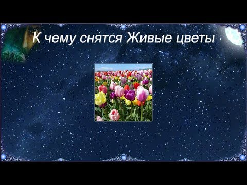 К чему снятся Живые цветы (Сонник)