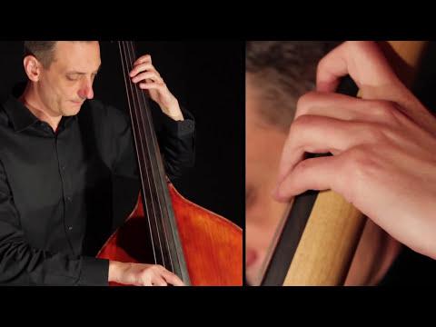Koncert Nenada Vasilića sredinom decembra u Nišu