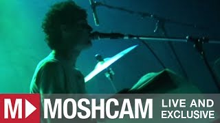 Animal Collective - Also Frightened | Live in Sydney | Moshcam