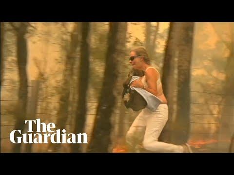 Συγκινητική διάσωση ενός κοάλα από τις φλόγες στην Αυστραλία