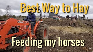 Feeding hay this way is healthier for the horses