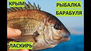 Рыбалка с берега в крыму форум