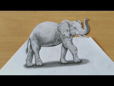 Drawing 3D Elephant - How to Draw 3D Elephant on Paper