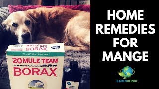 TED'S REMEDY FOR MANGE