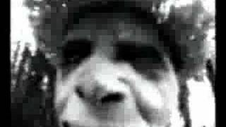 Sparklehorse - Pig
