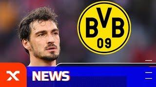 BVB-Rückkehr? Darum Sollte Der FC Bayern Mats Hummels Halten | FC Bayern München | Dortmund | SPOX