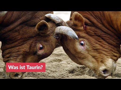 Was ist Taurin?
