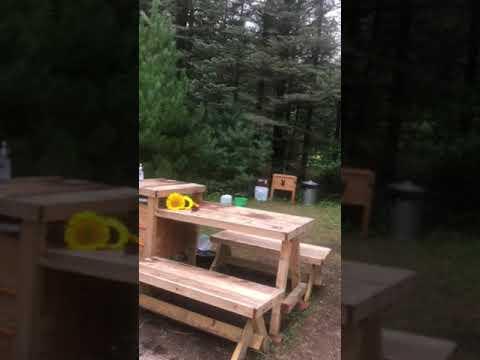 Video Of Pine Meadows, MI