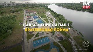 """Парк """"Братеевская пойма"""""""