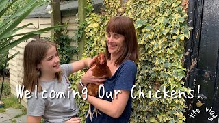 Chicken Adventures, Autumn Candles & Fajitas • Life Vlogs