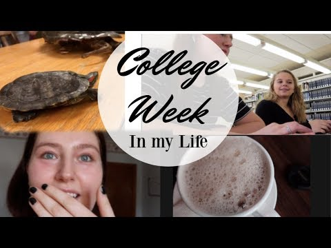 mp4 College Zoology, download College Zoology video klip College Zoology