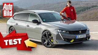 [AUTO BILD] Peugeot 508 PSE (2021) | Erste Fahrt im 360 PS starken Peugeot 508 | Test mit Moritz Dok