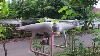 Test Flight Dji Phantom 4 Std