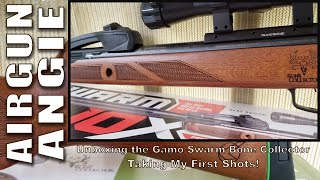 Unboxing Gamo Swarm Bone Collector
