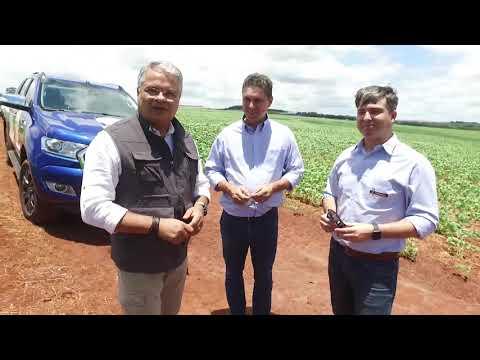 Plataforma tecnológica ajuda produtores