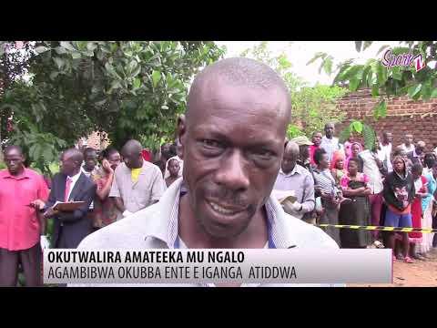 Agambibwa okubba ente e Iganga akwatiddwa