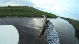 Ловля рыбы на реке тузловка