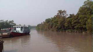 Sundarban is The Best and Biggest Mangrove Forest in The World Video