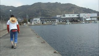 釣れる堤防情報、長崎県釣り場所動画その8場大村湾堤防編