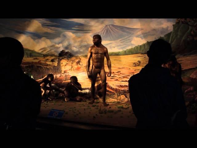 sportourism.id - Menengok-Museum-Manusia-Purba-Sangiran
