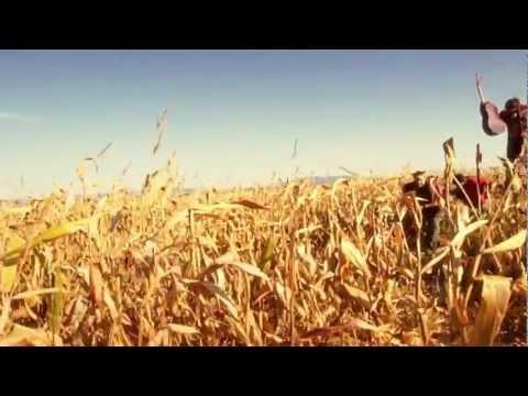 Patália - Patália - Prasa/Pálenka (official video HD)