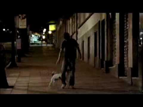 Cão Sem Dono - 2007 - Trailer