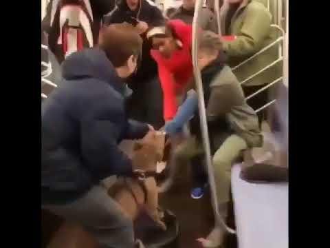 В метро Нью-Йорка питбуль напал на женщину