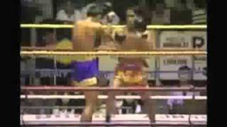 MUAY THAI BEST OF KNOCK OUT   Vidéo Dailymotion