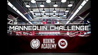 Boxing Academy TMT - новый уникальный зал от Флойда Мейвезера и Тимофея Кургина