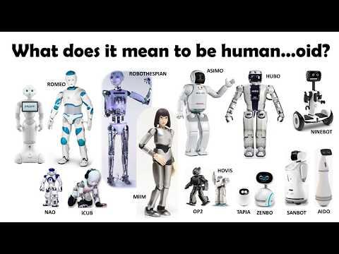 Social Robots & Healthcare