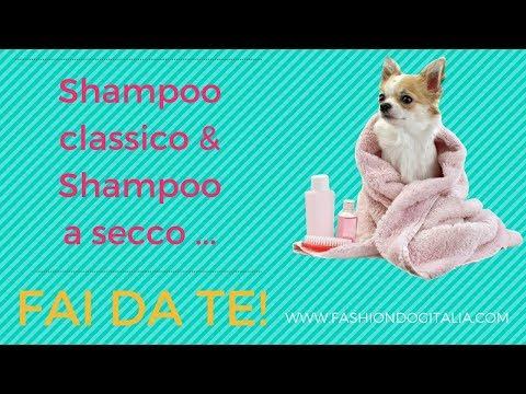Shampoo per cani fai da te: shampoo classico e a secco!