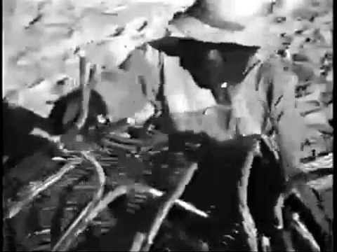 Suíte do Pescador - Dorival Caymmi