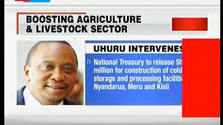 Mount Kenya politicians welcome President Uhuru's plan for Kenyan farmers