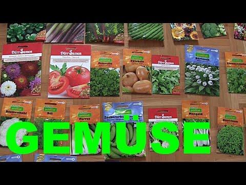 Vorbereitung für die Aussaat von Jungpflanzen (Gemüseanbau) & Kräuter im Januar | WildpflanzenTV